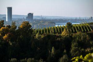 SchnellesBad Deutschland Bonn: Umbau Wanne zur Dusche, Badmodernisierung vom Bad Fachbetrieb